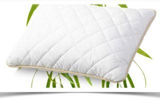 Подушка эвкалипт — ее преимущества и недостатки