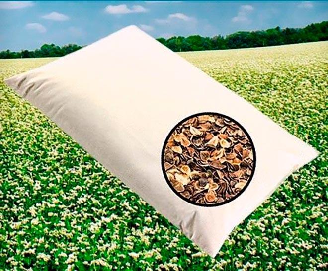 Подушка из гречневой лузги на фоне поля с цветущей гречкой