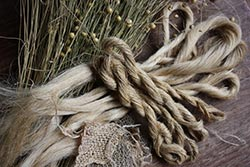 Лен - трава и обработанные волокна