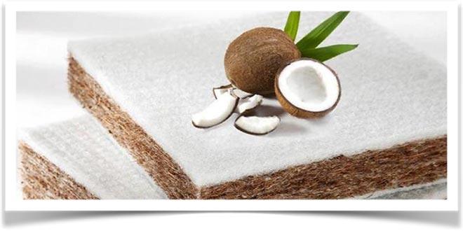 Кокосовый орех лежит на койре