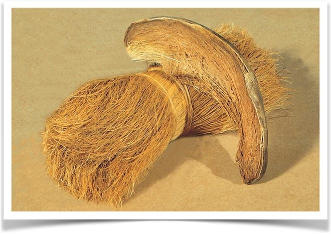 Койра кокоса
