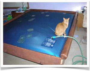 Проколы на водяном матрасе от кота
