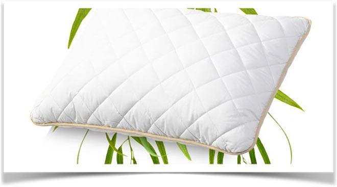 Подушка и эвкалиптовая ветвь