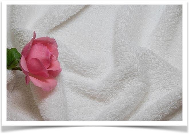 На махровой ткани лежит роза