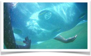 Надувной матрас под водой